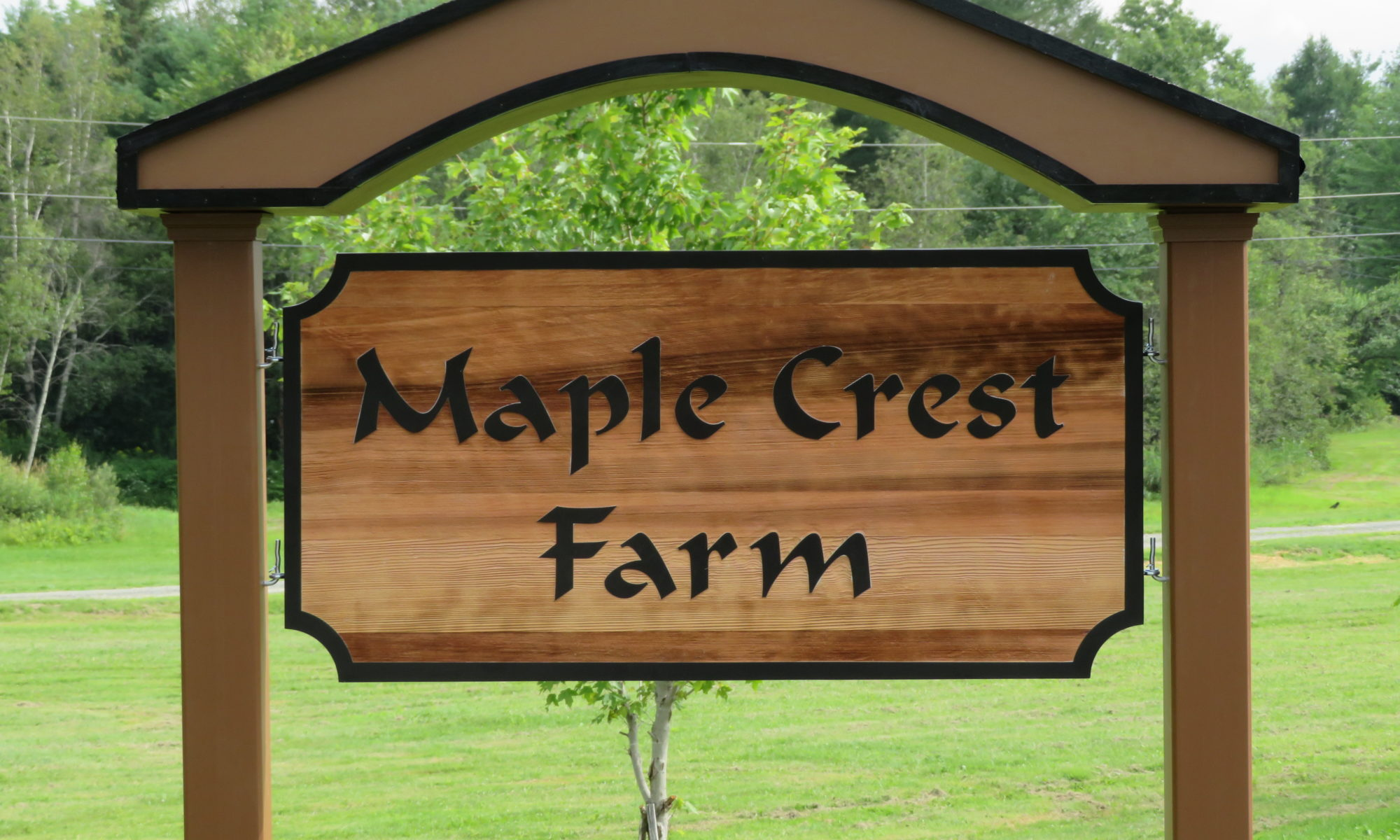 Maple Crest Farm